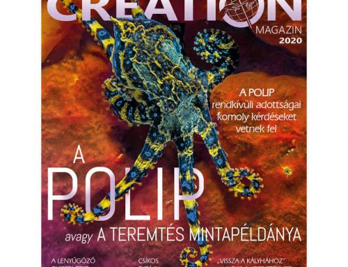 Creation magazin